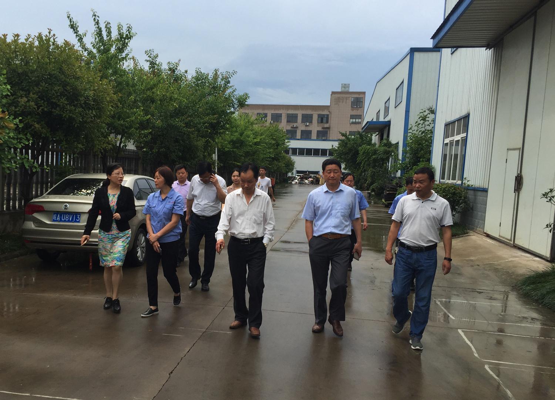 肥西县县委副书记宣丽玲莅临安徽宇锋公司参观指导